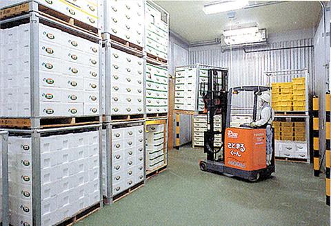 大型冷蔵保管庫